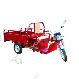 Seenwon Electric Tricycle SW009 Supply by Fullwon